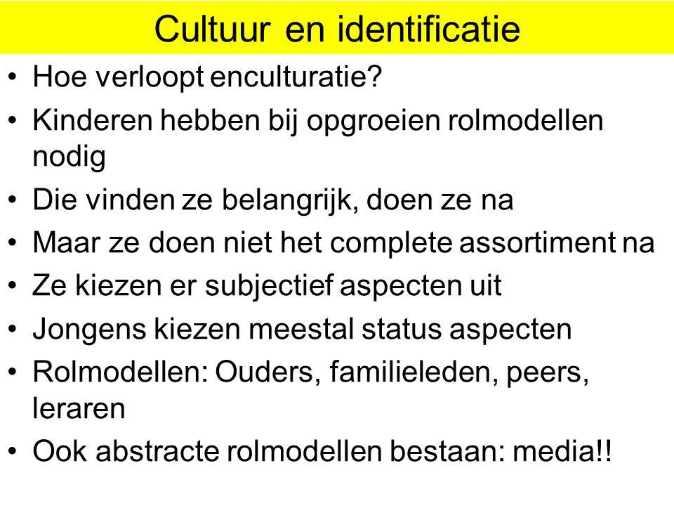 Cultuur bepaalt de vorm • Allochthonen hebben groepsgewijs eigen culturen • Autochthonen hebben groepsgewijs subculturen • Al die (sub) culturen versc