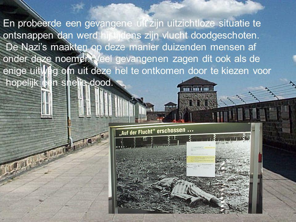 Konzentrationslager Mauthausen En probeerde een gevangene uit zijn uitzichtloze situatie te ontsnappen dan werd hij tijdens zijn vlucht doodgeschoten.