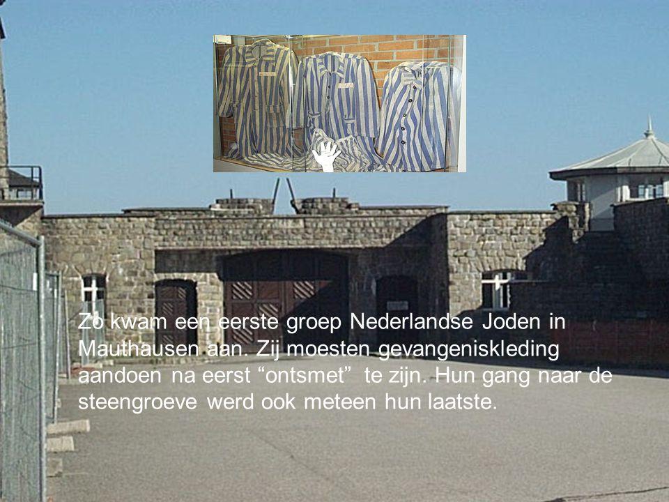 Zo kwam een eerste groep Nederlandse Joden in Mauthausen aan.