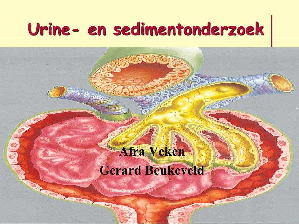 Urine- en sedimentonderzoek Afra Veken Gerard Beukeveld
