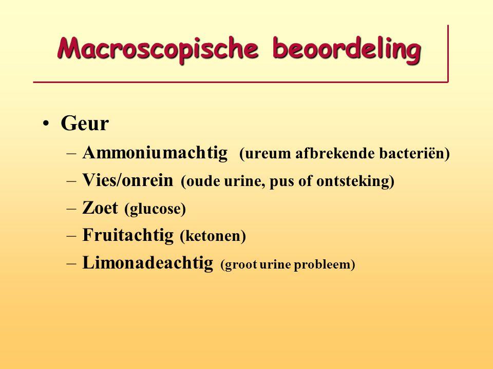 Macroscopische beoordeling •Geur –Ammoniumachtig (ureum afbrekende bacteriën) –Vies/onrein (oude urine, pus of ontsteking) –Zoet (glucose) –Fruitachti