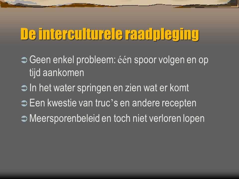 De interculturele raadpleging  Geen enkel probleem: éé n spoor volgen en op tijd aankomen  In het water springen en zien wat er komt  Een kwestie v