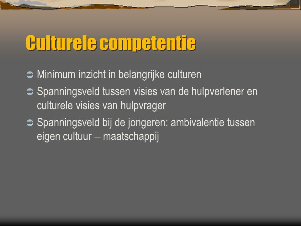 Culturele competentie  Minimum inzicht in belangrijke culturen  Spanningsveld tussen visies van de hulpverlener en culturele visies van hulpvrager 