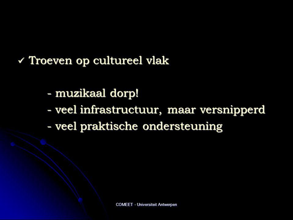 COMEET - Universiteit Antwerpen  Troeven op cultureel vlak - muzikaal dorp! - veel infrastructuur, maar versnipperd - veel praktische ondersteuning