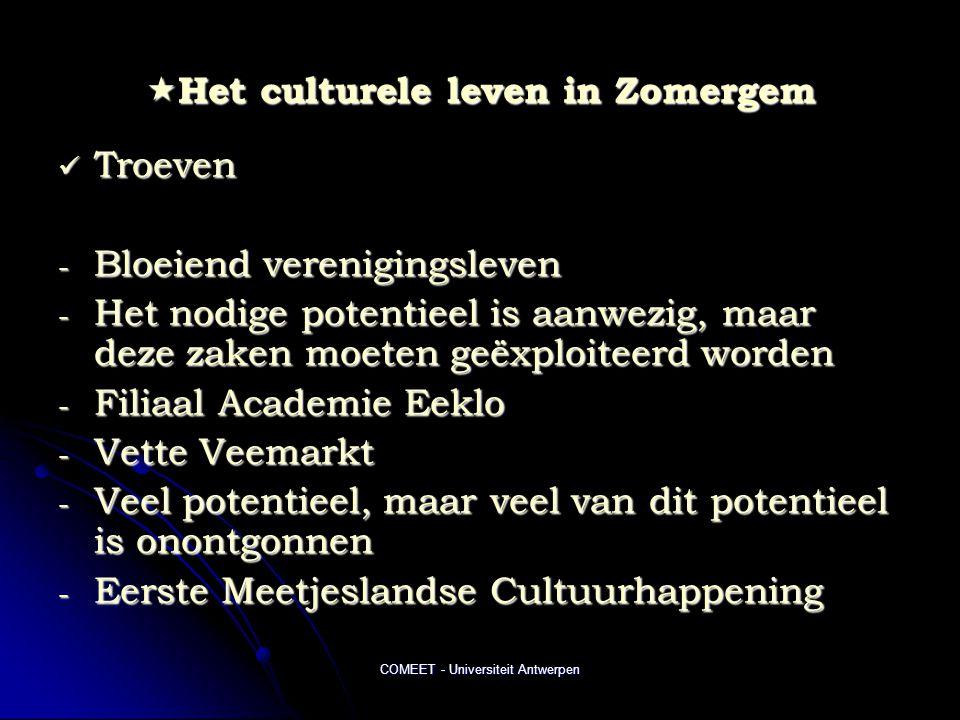 COMEET - Universiteit Antwerpen  Het culturele leven in Zomergem  Troeven - Bloeiend verenigingsleven - Het nodige potentieel is aanwezig, maar deze zaken moeten geëxploiteerd worden - Filiaal Academie Eeklo - Vette Veemarkt - Veel potentieel, maar veel van dit potentieel is onontgonnen - Eerste Meetjeslandse Cultuurhappening