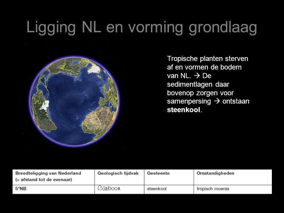 Ligging NL en vorming grondlaag Tropische planten sterven af en vormen de bodem van NL.  De sedimentlagen daar bovenop zorgen voor samenpersing  ont