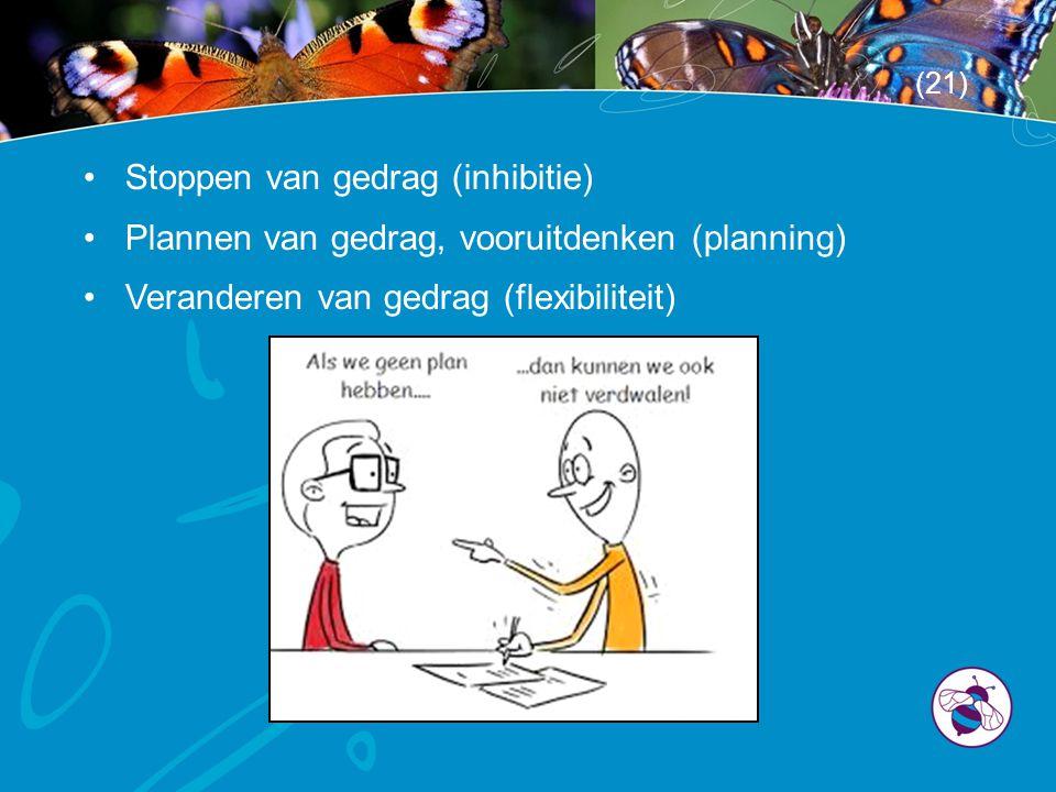 •Stoppen van gedrag (inhibitie) •Plannen van gedrag, vooruitdenken (planning) •Veranderen van gedrag (flexibiliteit) (21)