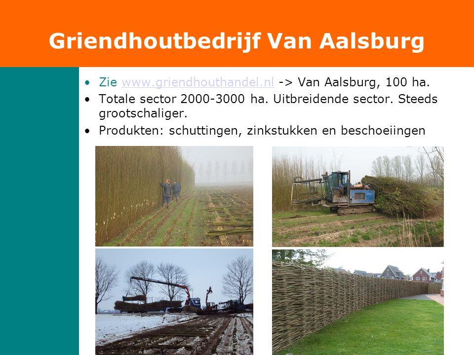 •Zie www.griendhouthandel.nl -> Van Aalsburg, 100 ha.www.griendhouthandel.nl •Totale sector 2000-3000 ha. Uitbreidende sector. Steeds grootschaliger.