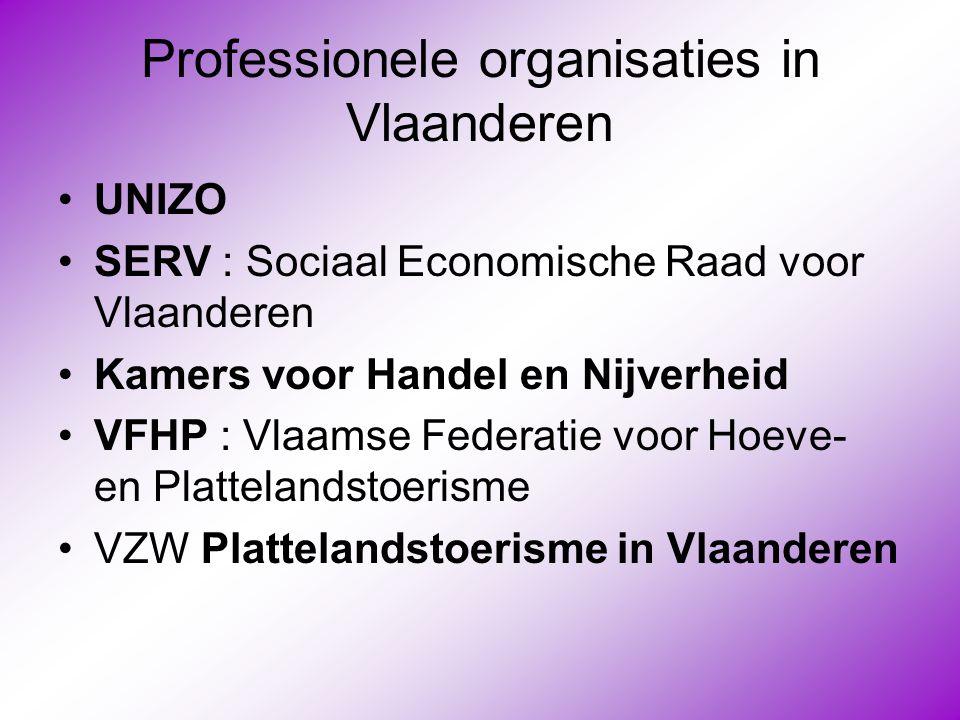 Professionele organisaties in Vlaanderen •UNIZO •SERV : Sociaal Economische Raad voor Vlaanderen •Kamers voor Handel en Nijverheid •VFHP : Vlaamse Fed