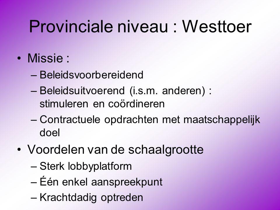 Provinciale niveau : Westtoer •Missie : –Beleidsvoorbereidend –Beleidsuitvoerend (i.s.m. anderen) : stimuleren en coördineren –Contractuele opdrachten