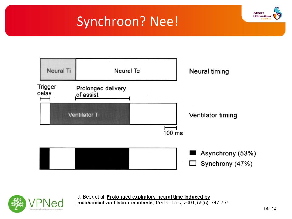 Synchroon? Nee! J. Beck et al; Prolonged expiratory neural time induced by mechanical ventilation in infants; Pediat. Res; 2004, 55(5); 747-754 Dia 14
