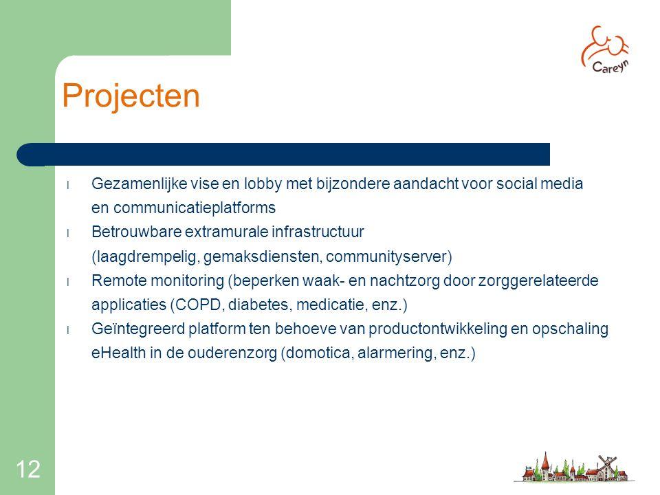 12 Projecten l Gezamenlijke vise en lobby met bijzondere aandacht voor social media en communicatieplatforms l Betrouwbare extramurale infrastructuur