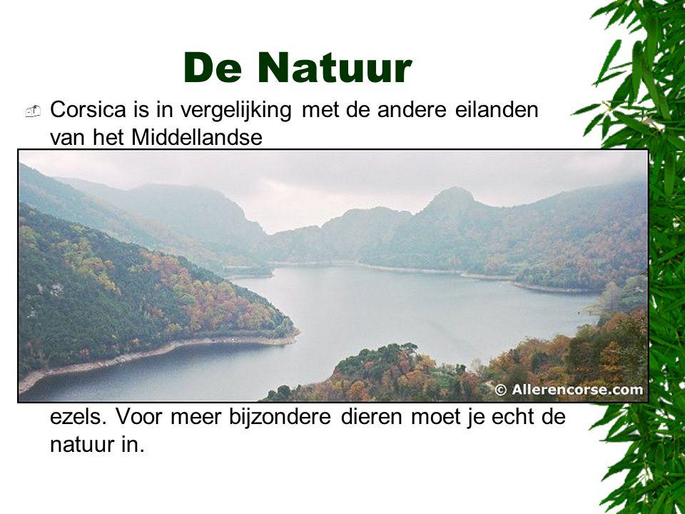 De Natuur  Corsica is in vergelijking met de andere eilanden van het Middellandse Zeegebied het groenste eiland.