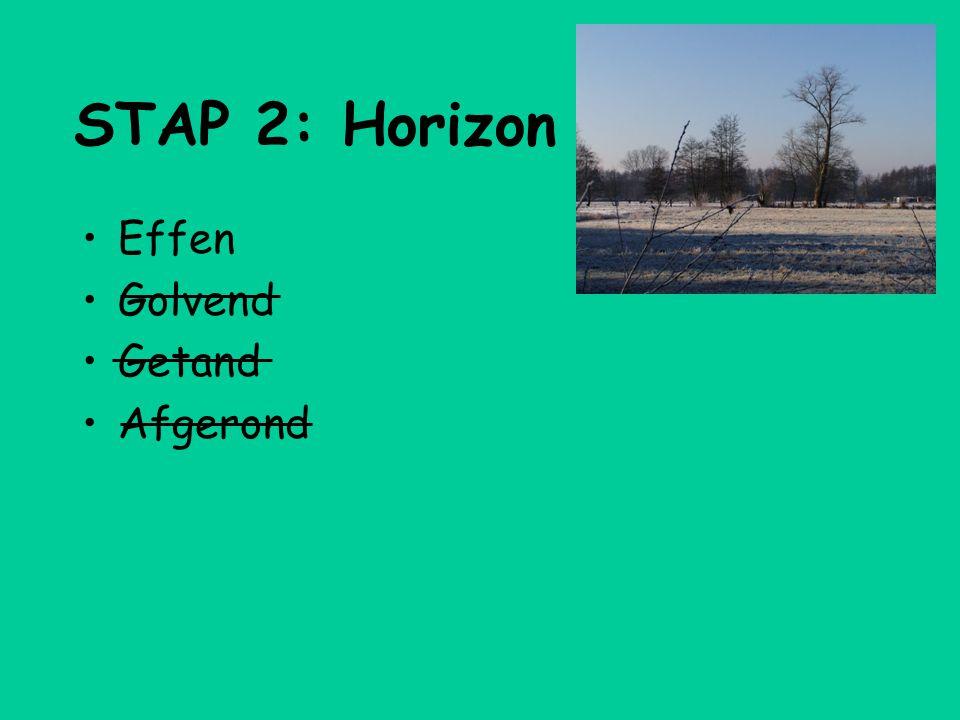 STAP 2: Horizon •Effen •Golvend •Getand •Afgerond