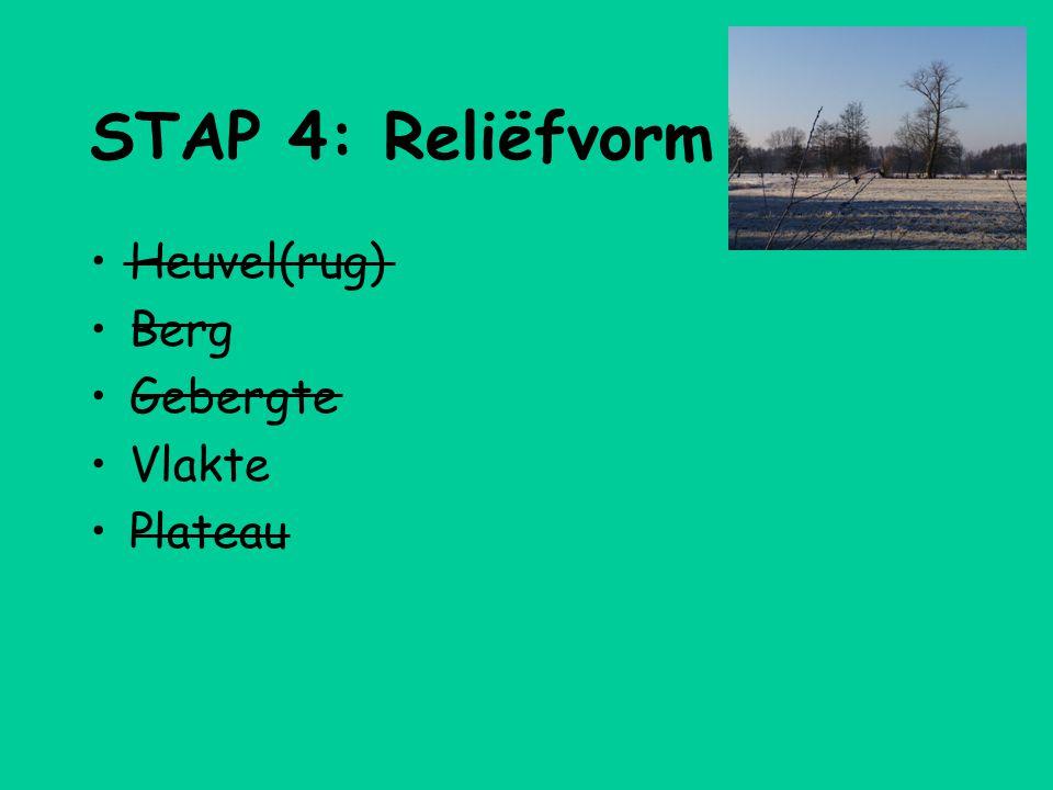 STAP 4: Reliëfvorm •Heuvel(rug) •Berg •Gebergte •Vlakte •Plateau