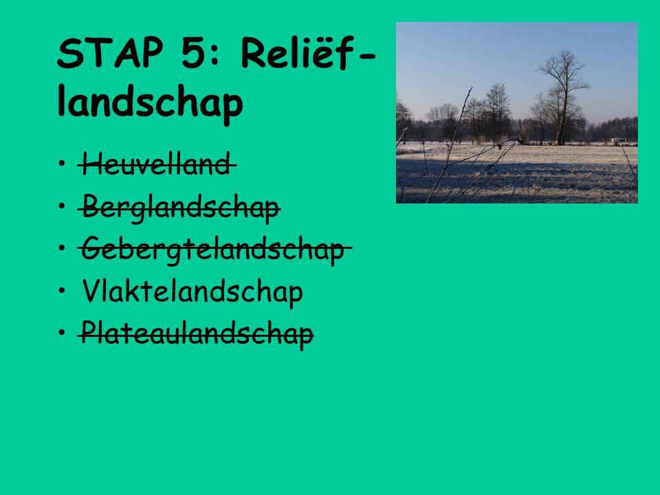 STAP 5: Reliëf- landschap •Heuvelland •Berglandschap •Gebergtelandschap •Vlaktelandschap •Plateaulandschap