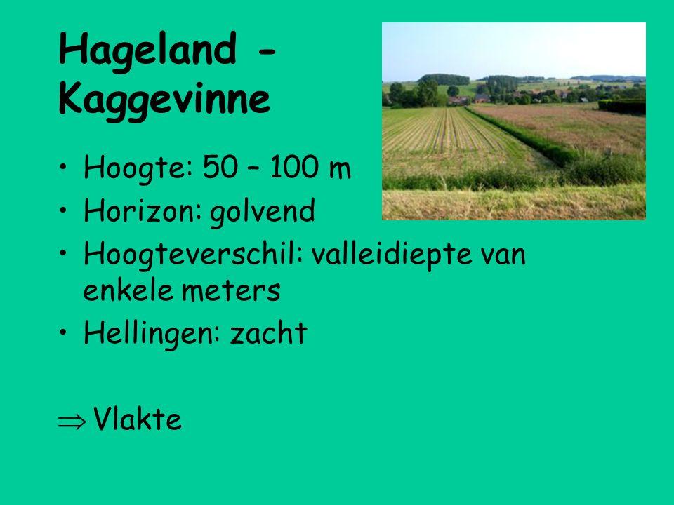 Hageland - Kaggevinne •Hoogte: 50 – 100 m •Horizon: golvend •Hoogteverschil: valleidiepte van enkele meters •Hellingen: zacht  Vlakte