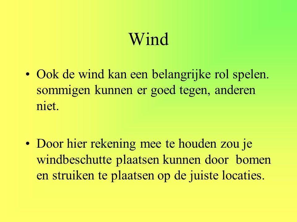 Wind •Ook de wind kan een belangrijke rol spelen. sommigen kunnen er goed tegen, anderen niet. •Door hier rekening mee te houden zou je windbeschutte