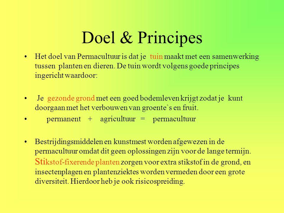Doel & Principes •Het doel van Permacultuur is dat je tuin maakt met een samenwerking tussen planten en dieren. De tuin wordt volgens goede principes