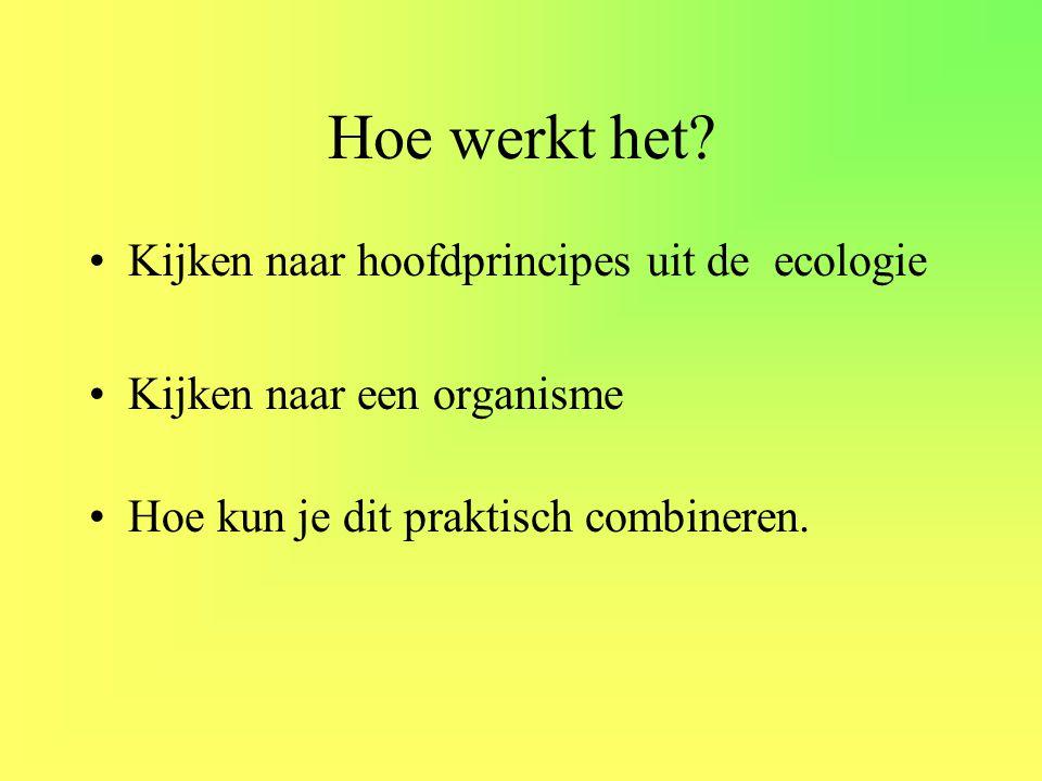 Hoe werkt het? •Kijken naar hoofdprincipes uit de ecologie •Kijken naar een organisme •Hoe kun je dit praktisch combineren.
