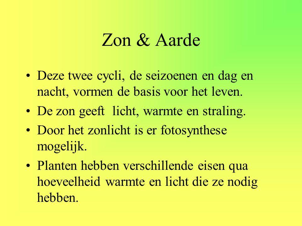 •Deze twee cycli, de seizoenen en dag en nacht, vormen de basis voor het leven. •De zon geeft licht, warmte en straling. •Door het zonlicht is er foto