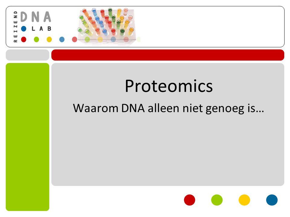 Proteomics Waarom DNA alleen niet genoeg is…