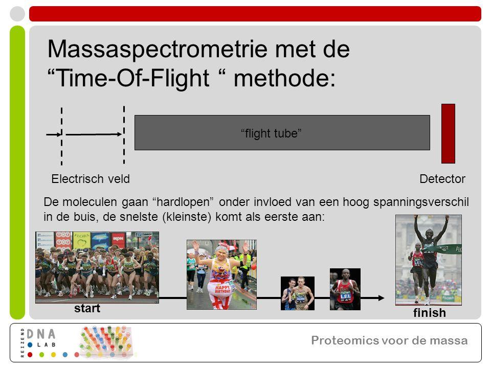 Massaspectrometrie met de Time-Of-Flight methode: flight tube Electrisch veld De moleculen gaan hardlopen onder invloed van een hoog spanningsverschil in de buis, de snelste (kleinste) komt als eerste aan: start finish Detector Proteomics voor de massa
