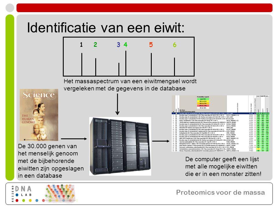 123456 Het massaspectrum van een eiwitmengsel wordt vergeleken met de gegevens in de database De 30.000 genen van het menselijk genoom met de bijbehorende eiwitten zijn opgeslagen in een database De computer geeft een lijst met alle mogelijke eiwitten die er in een monster zitten.