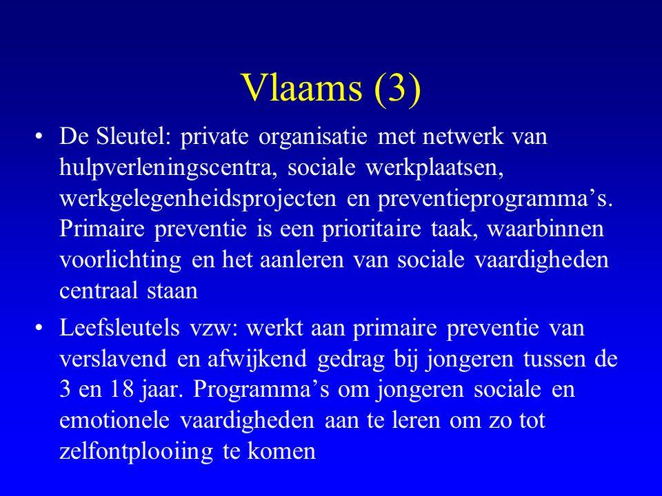 Vlaams (3) •De Sleutel: private organisatie met netwerk van hulpverleningscentra, sociale werkplaatsen, werkgelegenheidsprojecten en preventieprogramm