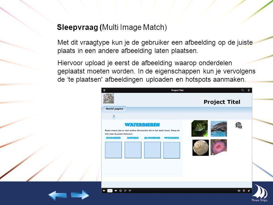 Sleepvraag (Multi Image Match) Met dit vraagtype kun je de gebruiker een afbeelding op de juiste plaats in een andere afbeelding laten plaatsen. Hierv