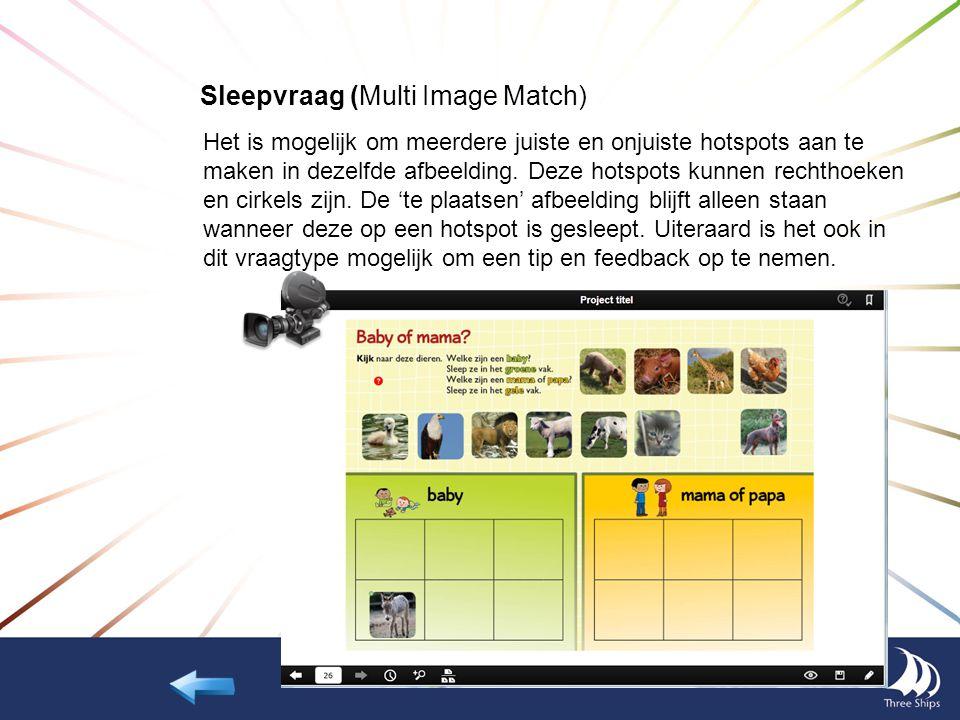 Sleepvraag (Multi Image Match) Het is mogelijk om meerdere juiste en onjuiste hotspots aan te maken in dezelfde afbeelding. Deze hotspots kunnen recht