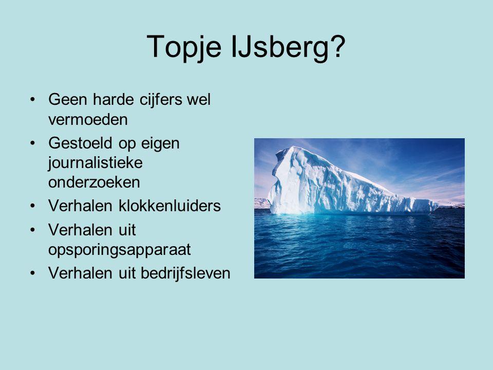 Topje IJsberg.