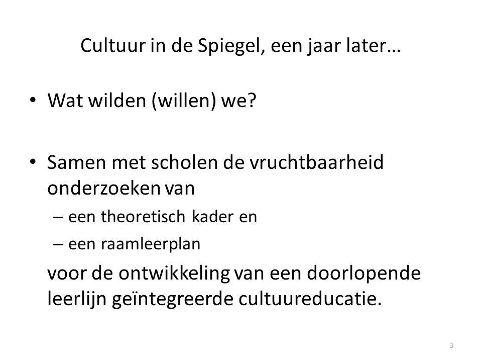 Cultuur in de Spiegel, een jaar later… • Waarom.Wat verwacht(t)en we.