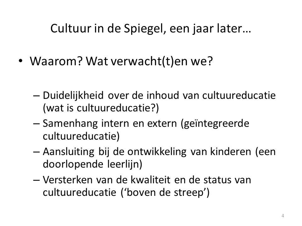 Cultuur in de Spiegel, een jaar later… • Hoe ver zijn we.