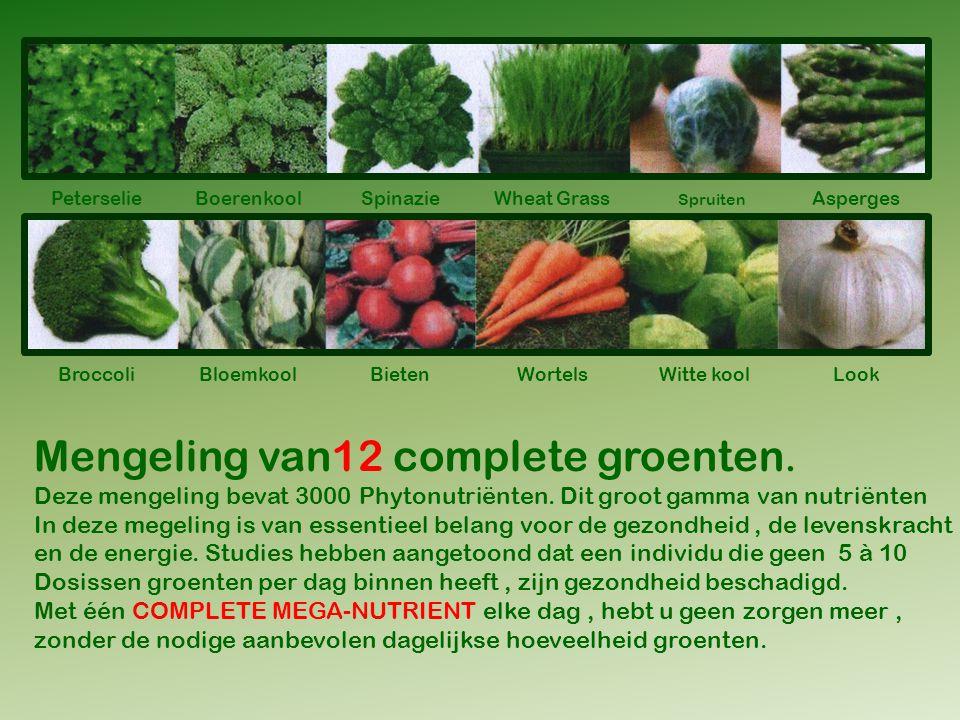 PeterselieBoerenkoolSpinazie Spruiten Asperges BroccoliBloemkoolBietenWortelsWitte koolLook Mengeling van12 complete groenten.
