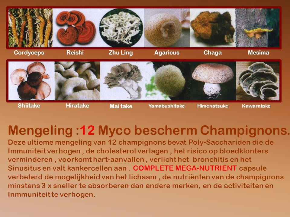 CordycepsReishiZhu LingAgaricusChagaMesima ShiitakeHiratake Mai take YamabushitakeHimenatsukeKawaratake Mengeling :12 Myco bescherm Champignons.