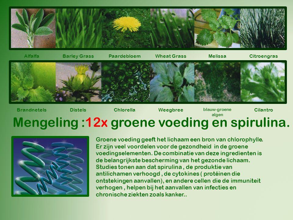 Alfalfa Barley GrassWheat Grass Melissa Citroengras Brandnetels ChlorellaWeegbree blauw-groene algen Cilantro Mengeling :12x groene voeding en spirulina.