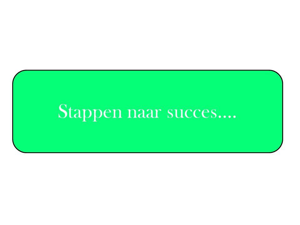 Stappen naar succes….