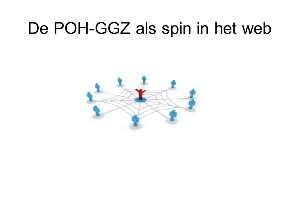 De POH-GGZ als spin in het web