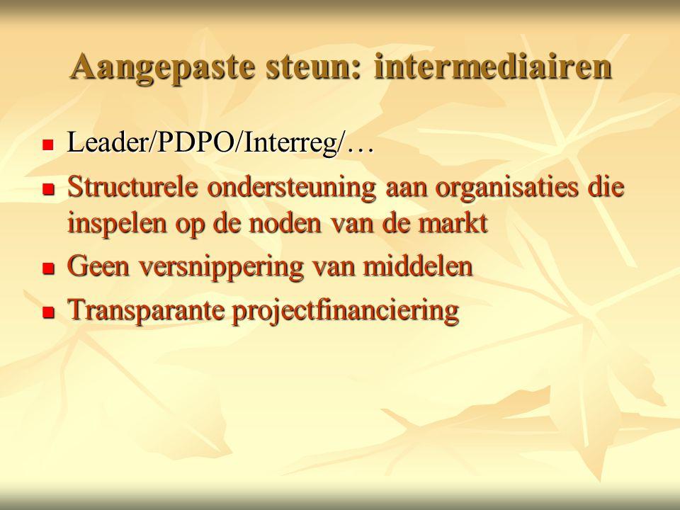 Aangepaste steun: intermediairen  Leader/PDPO/Interreg/…  Structurele ondersteuning aan organisaties die inspelen op de noden van de markt  Geen versnippering van middelen  Transparante projectfinanciering