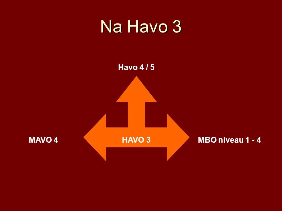 Na Havo 3 HAVO 3 Havo 4 / 5 MAVO 4MBO niveau 1 - 4