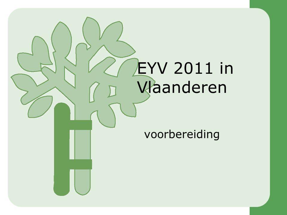 Stand van zaken •Europese Commissie –Voorbereiding •Eigen voorbereiding •Uitbesteding –Alliantie EYV2011 •Vlaanderen –Voorbereiding –NCO •Ontwerp jaarprogramma