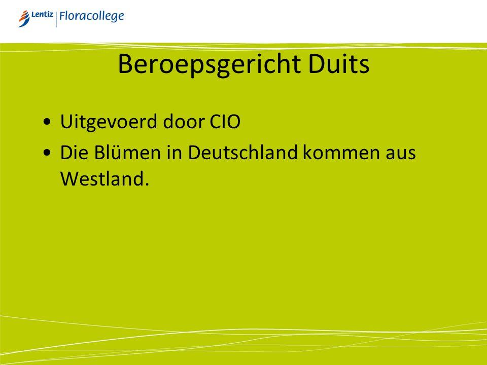 Beroepsgericht Duits •Uitgevoerd door CIO •Die Blümen in Deutschland kommen aus Westland.