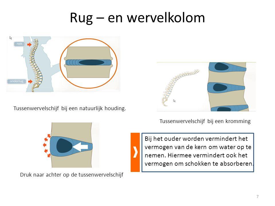 Preventie van rugproblemen in de kleuterklas Hygiëne: handen wassen Ga achter de kleuter staan met lichtjes gespreide benen 18