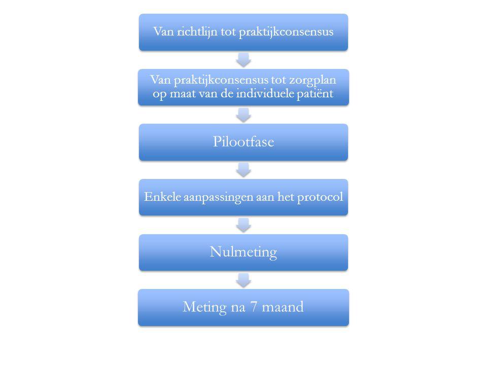 Van richtlijn tot praktijkconsensus Van praktijkconsensus tot zorgplan op maat van de individuele patiënt Pilootfase Enkele aanpassingen aan het protocol NulmetingMeting na 7 maand