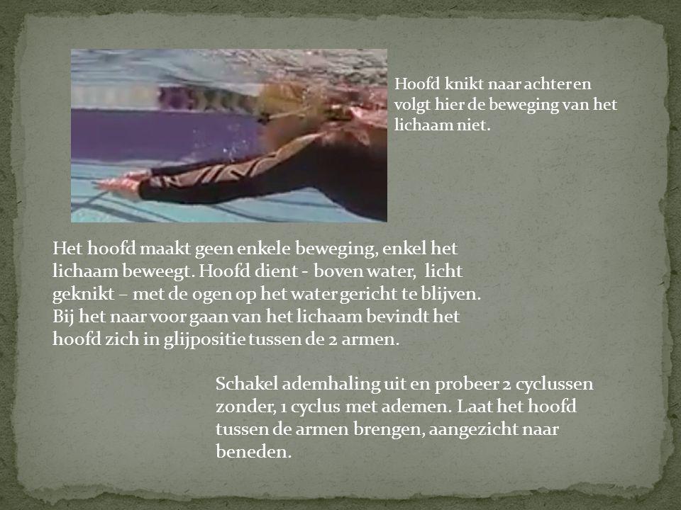 Het hoofd maakt geen enkele beweging, enkel het lichaam beweegt. Hoofd dient - boven water, licht geknikt – met de ogen op het water gericht te blijve