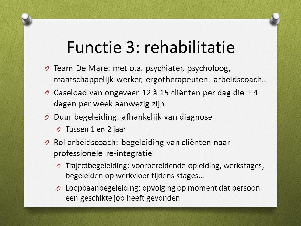 Functie 3: rehabilitatie O Team De Mare: met o.a.