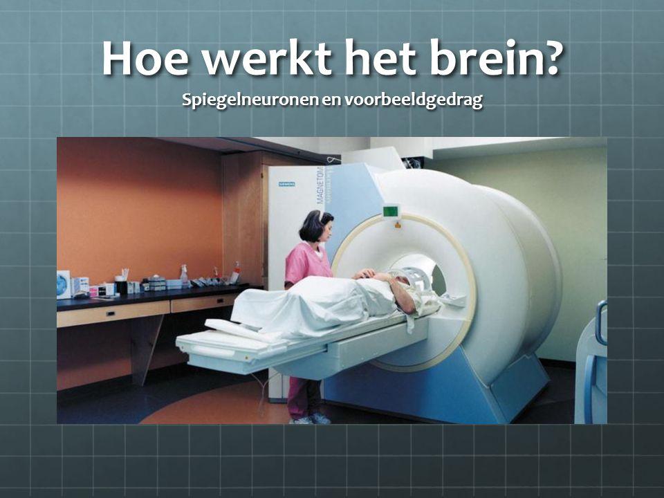 Hoe werkt het brein? Spiegelneuronen en voorbeeldgedrag