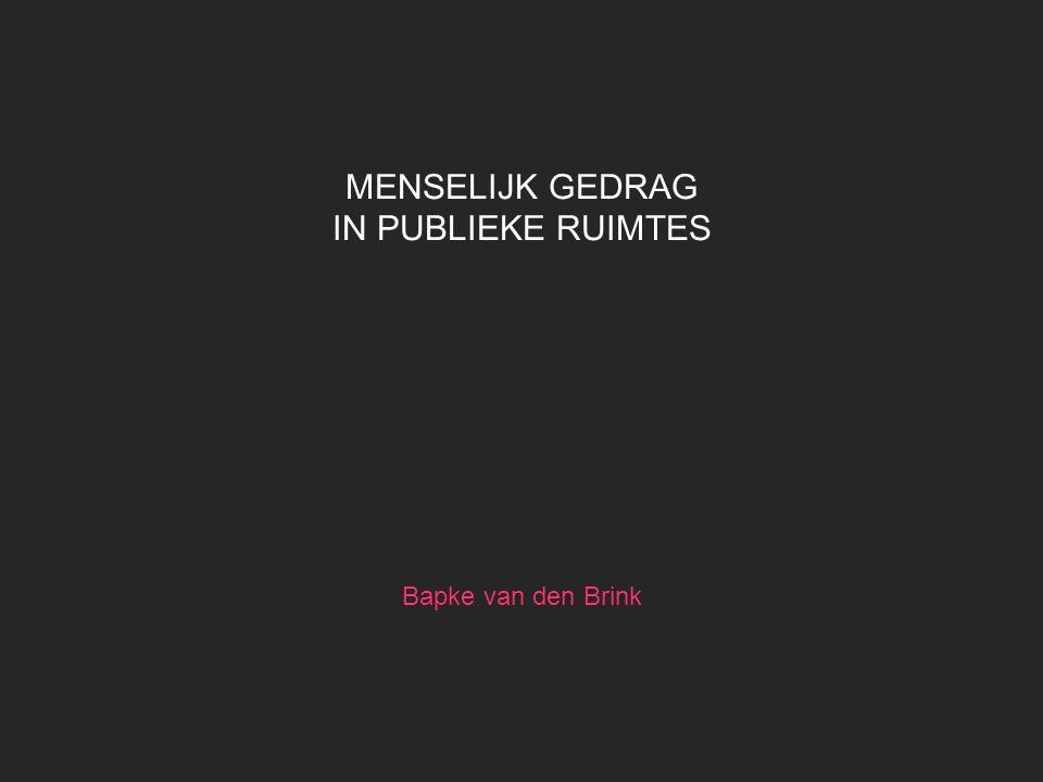 MENSELIJK GEDRAG IN PUBLIEKE RUIMTES Bapke van den Brink