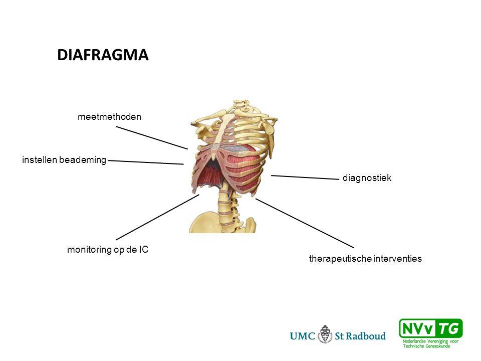 diagnostiek therapeutische interventies monitoring op de IC instellen beademing meetmethoden DIAFRAGMA